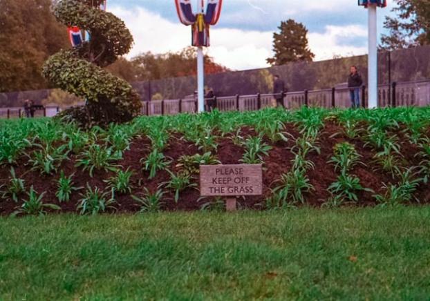 keep-off-the-grass-1-sur-1